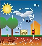Kolobeh CO2